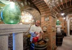 degustazione vini pregiati campania