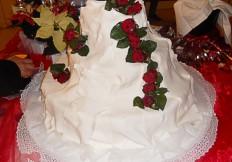 torta_08